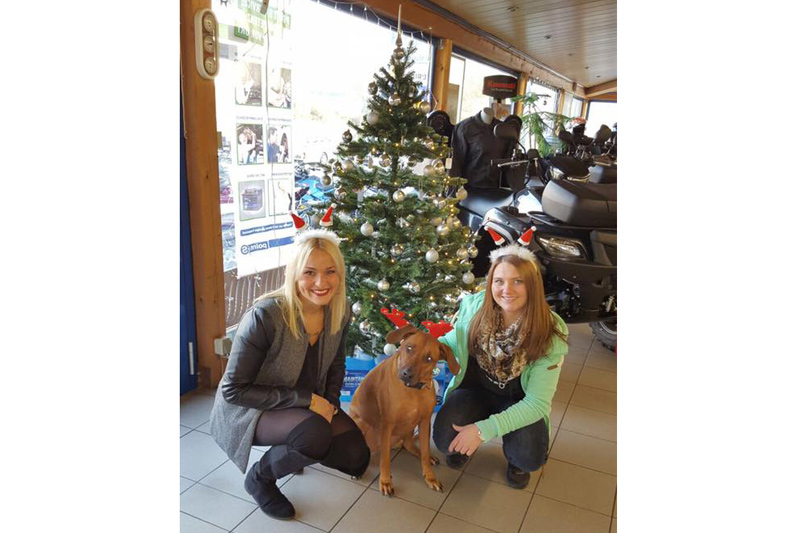 Im Saarland freut man sich auf Euch und den Nikolaus.